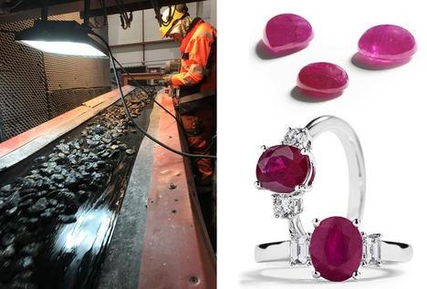 Los rubíes que vinieron del frío: Sangre de Pichón en Groenlandia