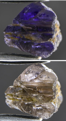 La Johnkoivulaita muestra un fuerte pleocroísmo, que se vuelve violeta (izquierda) a casi incoloro (derecha) cuando se examina con luz polarizada. Campo de visión: 10.05 mm. Fotomicrografías de Nathan Renfro / GIA.