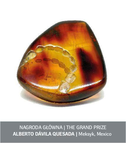 92c8f86959e2 El jurado de la feria polaca Amberif ha dado a conocer a los ganadores de  su certamen anual de diseño de joyas con esta gema de origen orgánico