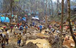 Miles de malgaches trabajan en medio de la selva tropical buscando su fortuna detrás de los zafiros.
