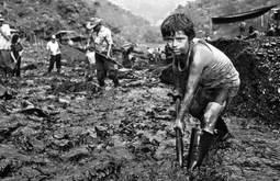 Un niño trabajando en una mina en COlombia. Foto: www.fundacionhilosdeoro.org