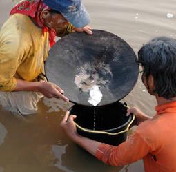 El consumo de mercurio para la amalgama del oro en regiones como el Sudeste Asiático asciende a unas 650 toneladas anuales