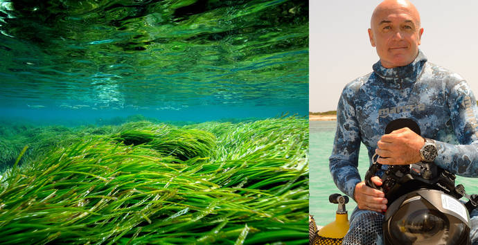 Tag Heuer apoya la conservación de la Posidonia mediterránea