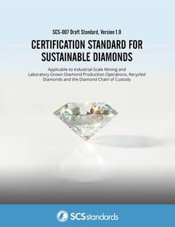 Documento de análisis para la certificación de la consultora SCS.